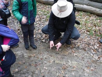 Hľadáme stopy zvierat